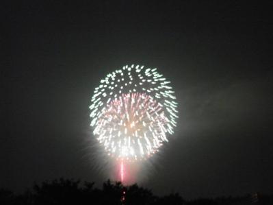 2011片貝花火01