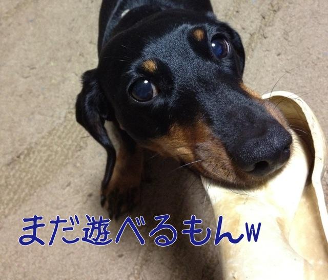 blog7-1.jpg