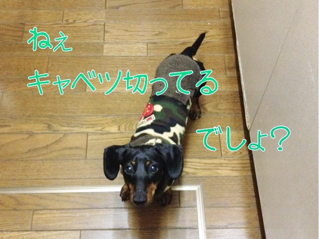 blog7-3.jpg
