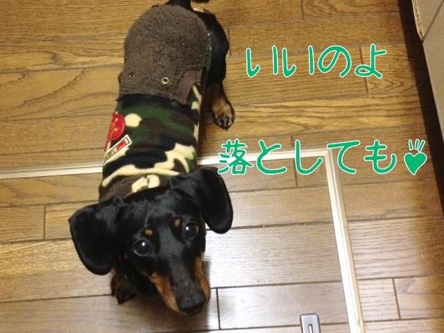 blog7-4.jpg
