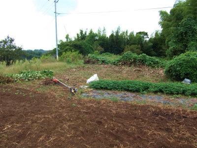 開墾中の畑1