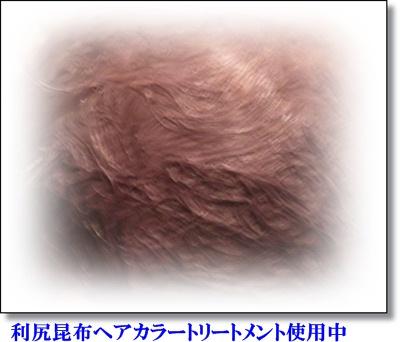 20120110白髪 利尻初日 修正