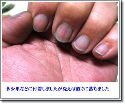20120112 利尻染め後爪に色が付着 修正