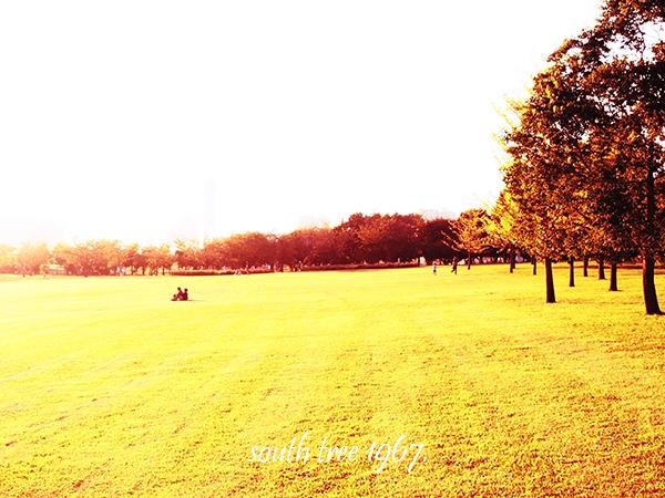 公園1ブログ用