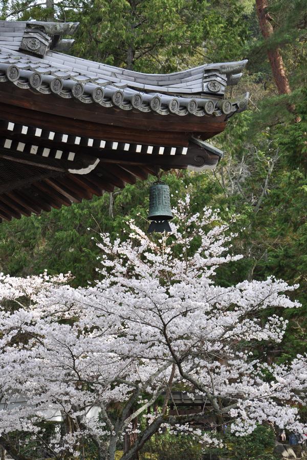 kyoto-0262.jpg