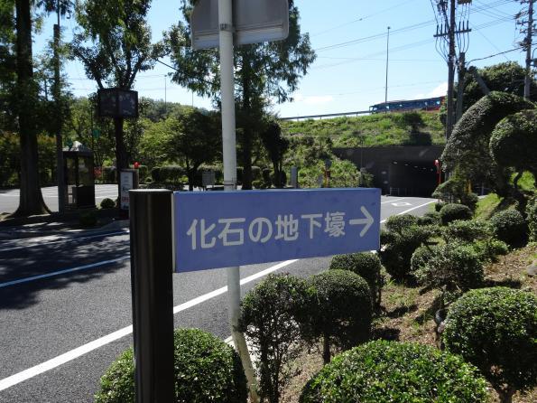 kaseki2_convert_20141008204542.jpg