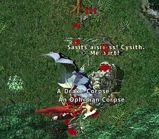 screenshot_719_04.jpg