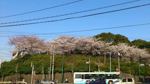 26_飛鳥山公園convert_20120409202929