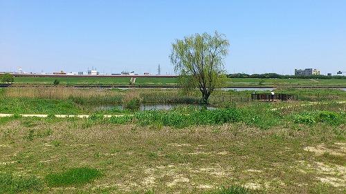 20120505_CR_006.jpg