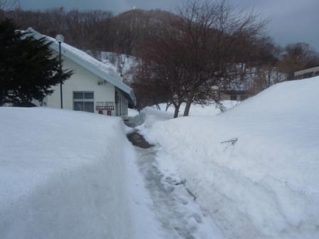 雪どけ 009