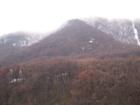 藻岩山 001