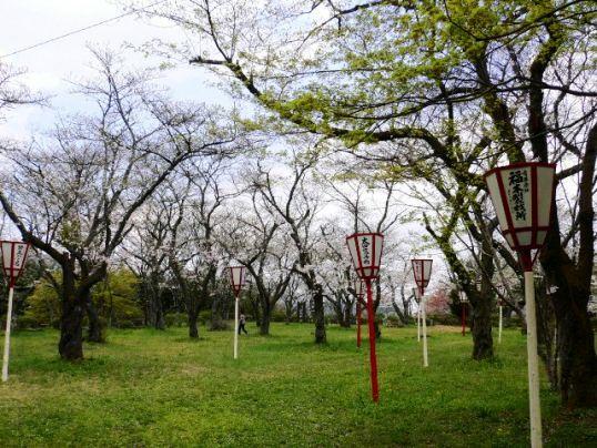 月山冨田城3