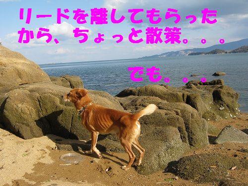 IMG_5168 - コピー