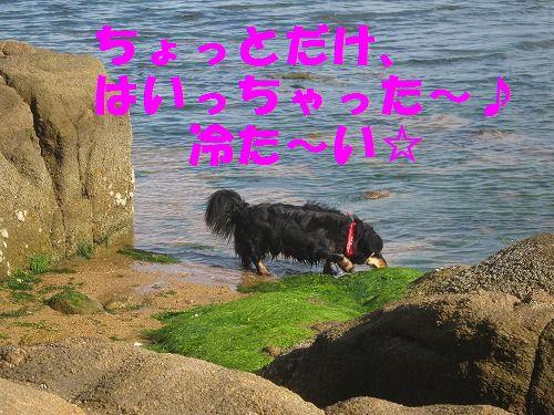 IMG_5177 - コピー
