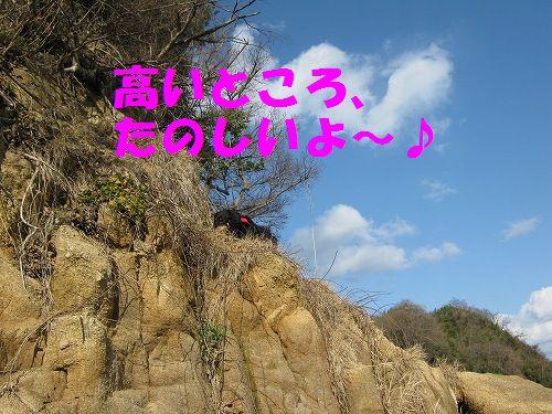 IMG_5138 - コピー