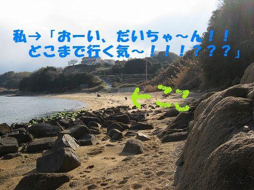 IMG_5191 - コピー