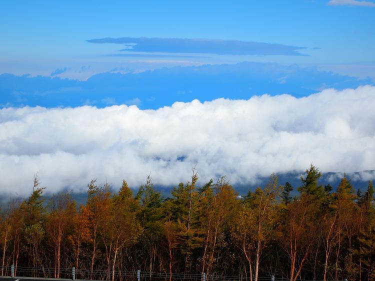 富士山紅葉 22
