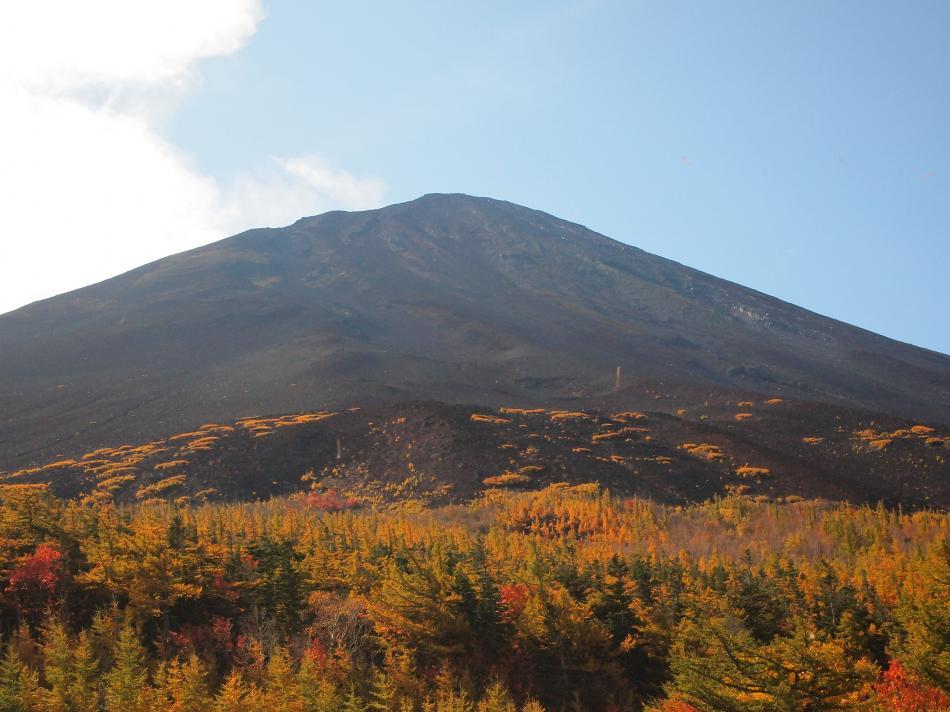 富士山紅葉 28