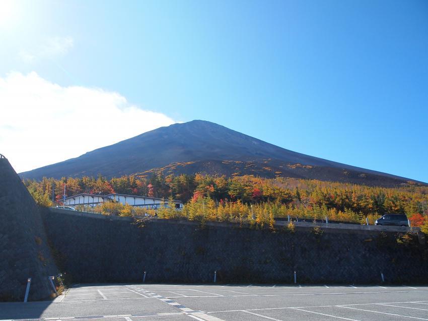 富士山紅葉 29