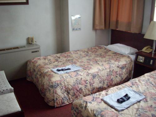 ガーデンホテル大和-3