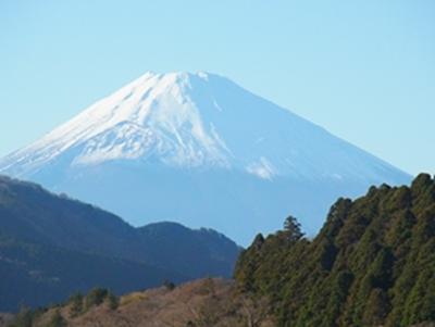 富士山(大)