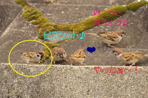 020_20130131194518.jpg