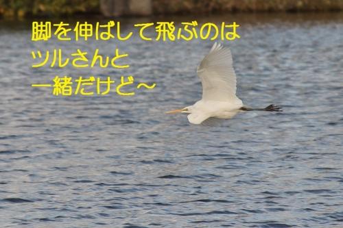 130_20140219210826114.jpg