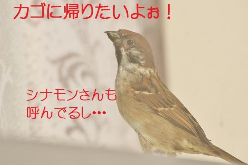 140_20130122222639.jpg