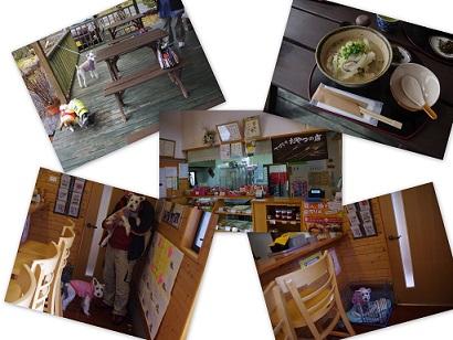 2014-02-08 大分旅行