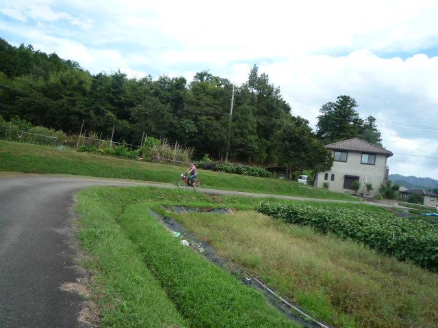 田んぼ道P1070408