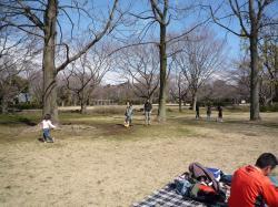 お気に入り公園