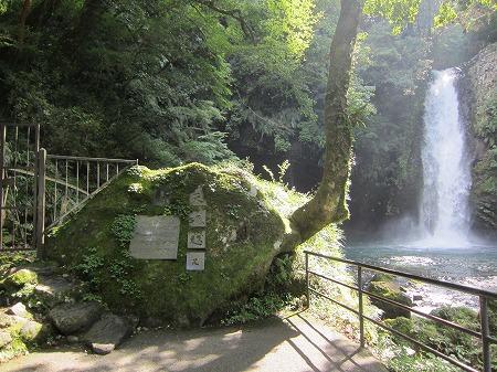 浄蓮の滝 2