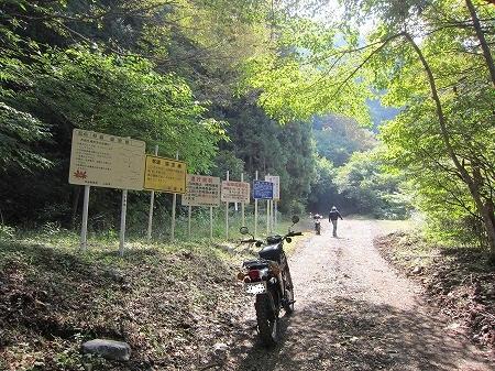林道盛里線 1