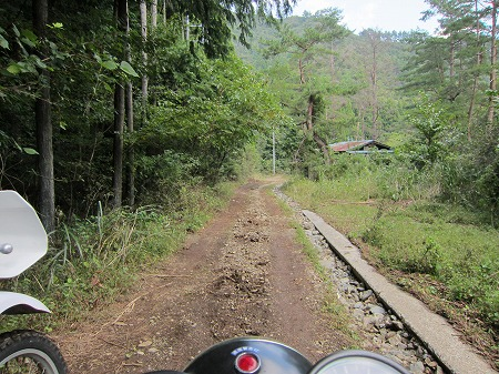 林道焼猿線