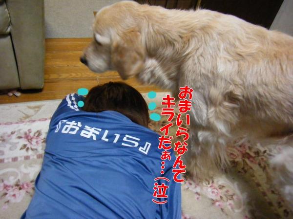 DSCF2050_20120212003115.jpg