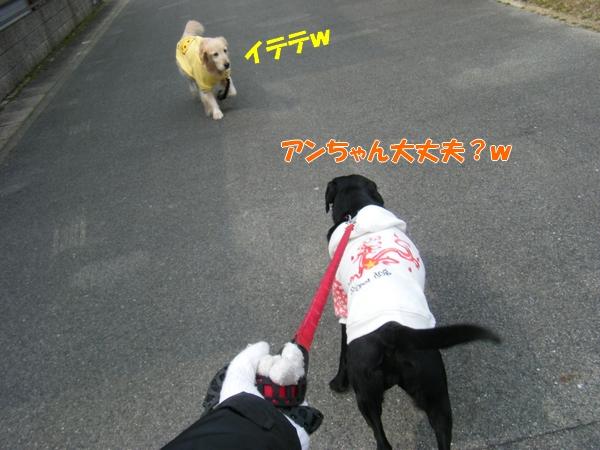 DSCF5424.jpg