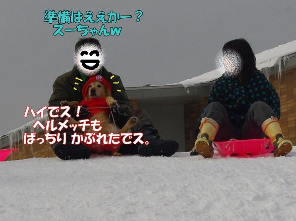 IMGP9976.jpg