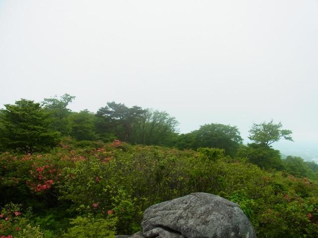 130603-81.jpg
