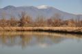澄んだ空気に映える浅間山