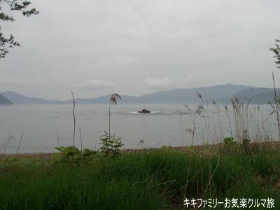 k-2011-5-20-17.jpg