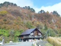 11月1日歳時記会館周辺の紅葉