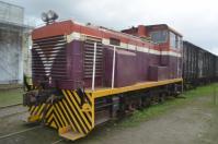 花蓮観光糖廠のディーゼル機関車130208