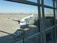 羽田空港でCI221便130225