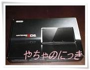 201203173DS.jpg