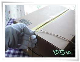 20120420ひもかけ1