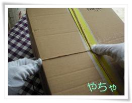 20120420ひもかけ2