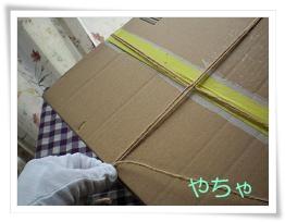 20120420ひもかけ3