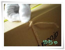 20120420ひもかけ5