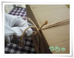 20120420ひもかけ9