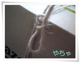 20120420ひもかけ10